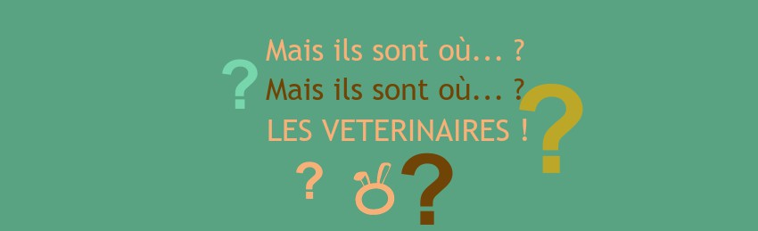 illustration-recrutement-veterinaire